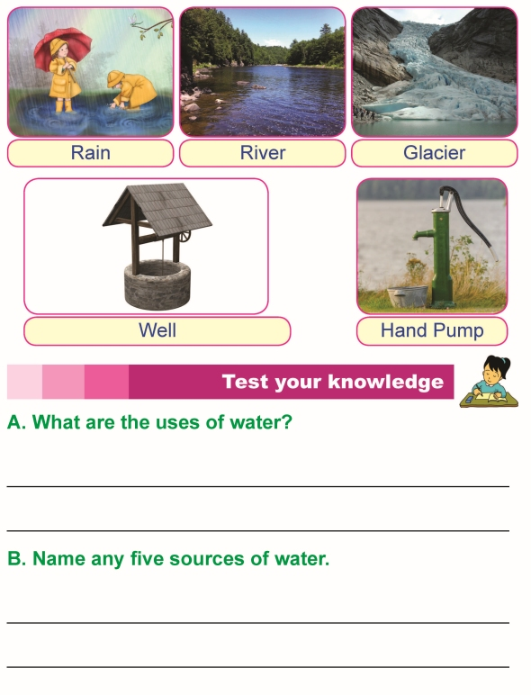 1st grade 1 science worksheet