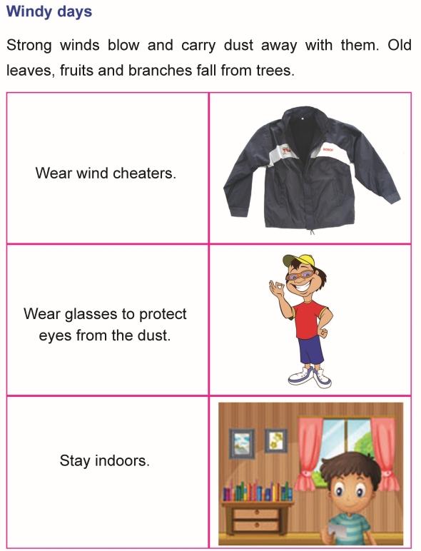 1st grade 1 science worksheet