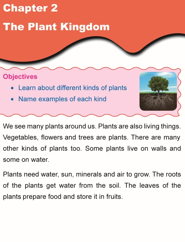 Grade 1 Science Lesson 2 The Plant Kingdom