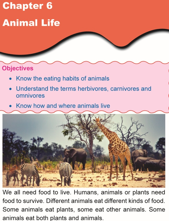 Grade 1 Science Lesson 6 Animal Life
