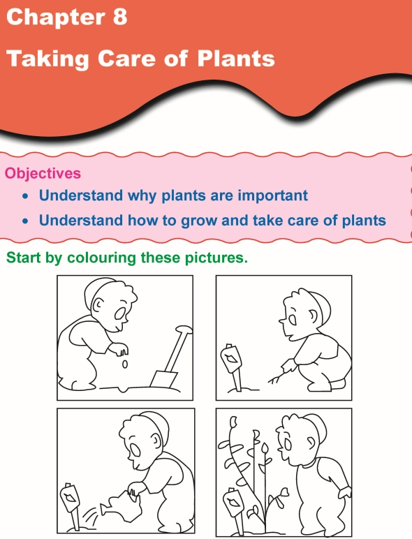 Grade 1 science lesson 8 taking care of plants primary science 1st grade 1 science worksheet ibookread Read Online